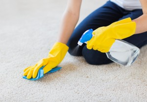 Carpet cleaning tips from Majestic Cleaning in Devon